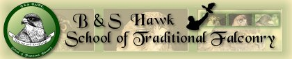 B&S Hawk - School of Traditional Falconry